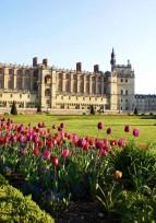 La protection des édifices historiques en France et en Allemagne